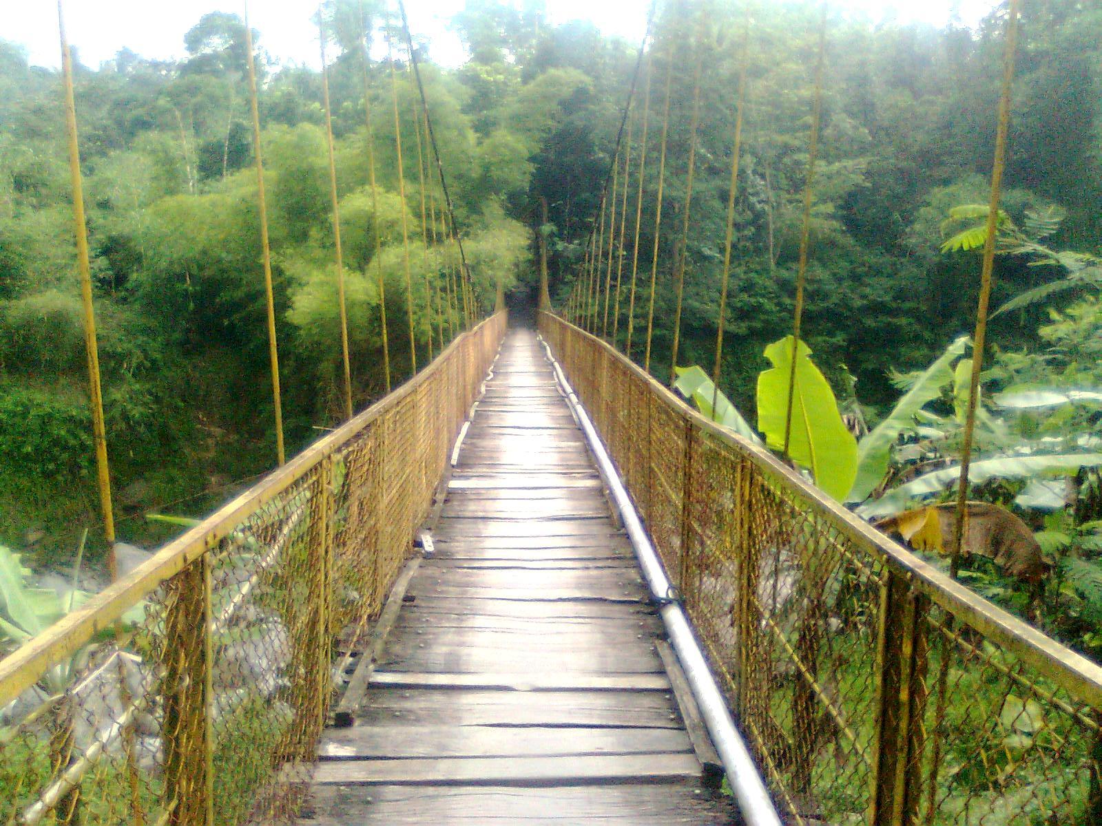 Kondisi Jembatan Gantung Cikeruh Desa Pasirayu / Foto : www.pasirayu.desamembangun.or.id