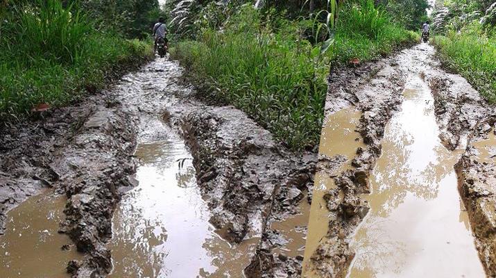 Foto: Berkati Ndraha | Kondisi Jalan Ladea Orahua