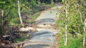 jalan-desa-wunduhaka