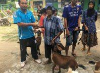 Tingkatkan Kesejahteraan Warga, Desa Sumberjo beri Bantuan Kambing